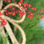 【1月の歳時記】お正月飾り(門松・玉飾り・輪飾り・しめ縄・鏡餅)意味や風習を紹介します