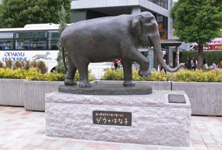 吉祥寺駅はな子銅像
