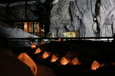 旭山動物園雪あかりの動物園