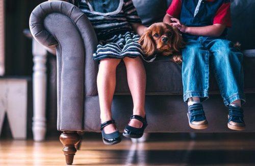 子どもの足と犬