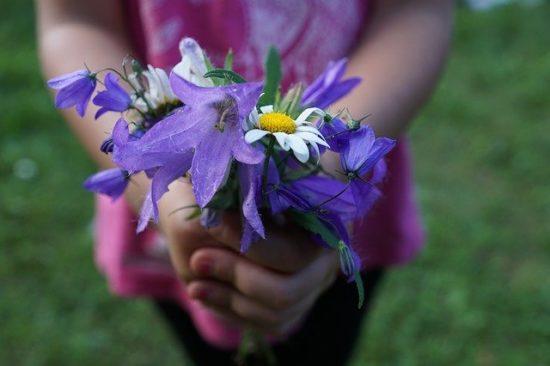 花と子供の手
