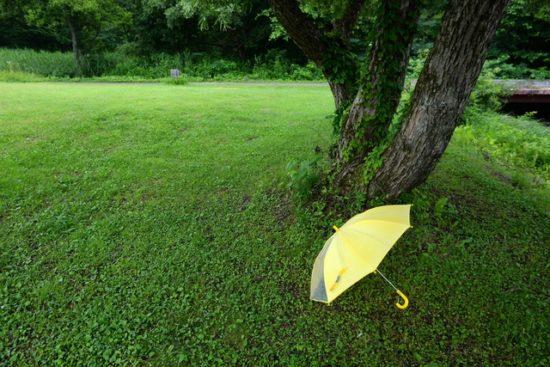 子どもの傘