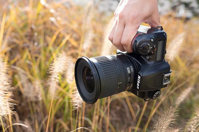 秋のカメラ