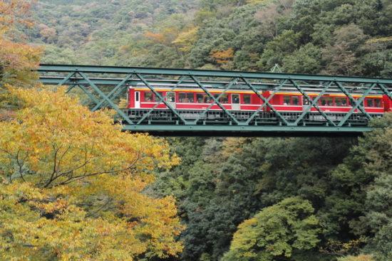 秋の紅葉と電車