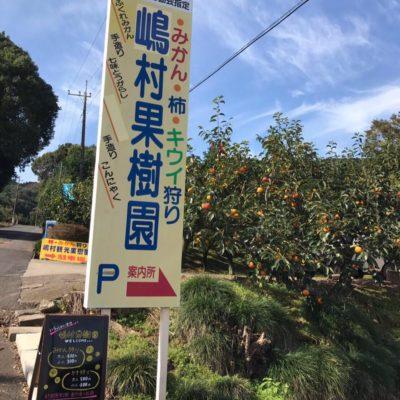 嶋村観光果樹園