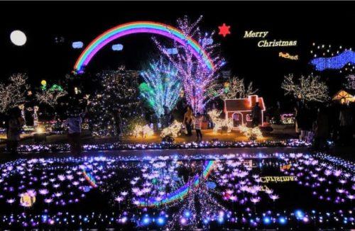 あしかがフラワーパークのクリスマス