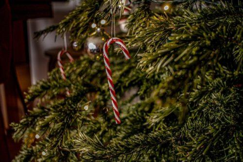 クリスマスツリーの杖