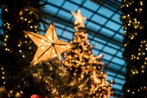 クリスマスツリーの星