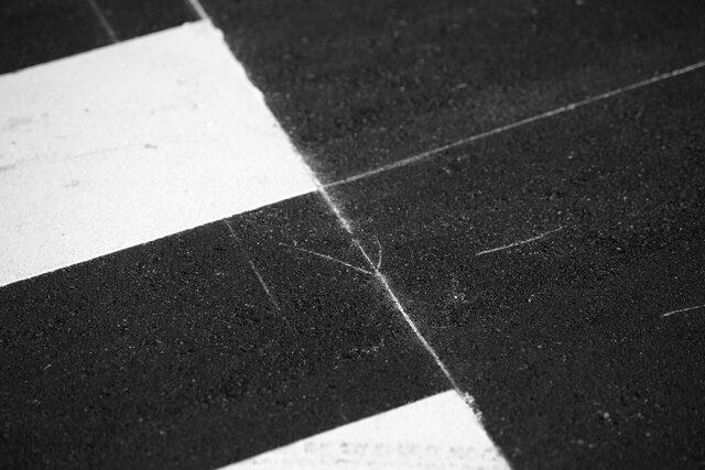 横断歩道の白い線
