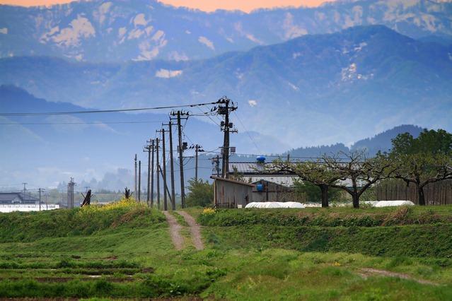里山の田舎道にある電柱